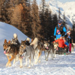 Famille vars mush and co sleigh dogs husky-2