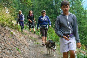cabane header cani-rando Vars south Alps Mush and co été freeride ballades Alpes