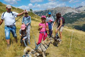 cabane header cani-rando Vars south Alps Mush and co été freeride summer_
